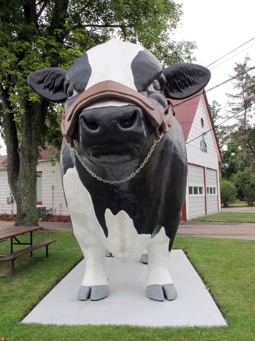 Elsie's big cow (all photos copyright Kath Usitalo)