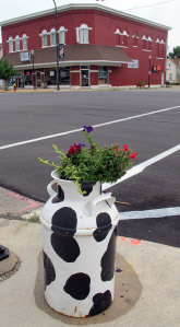 Even the flower pots are cow-themed milk cans
