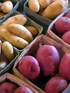 market potatoes_9108