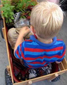 market wagon-_91401