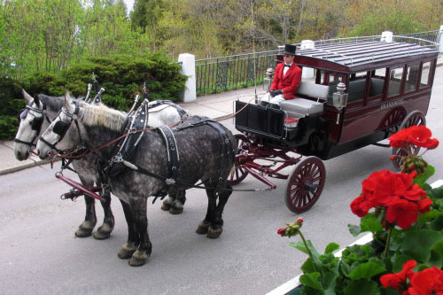 You could win two kinds of horsepower: The Ford Energi and a trip to Grand Hotel on motor-free Mackinac Island