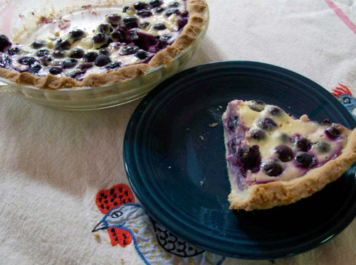 Blueberry yogurt pie: a summertime favorite (photos by TJ)