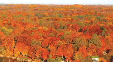 Time to Fall for Pure Michigan