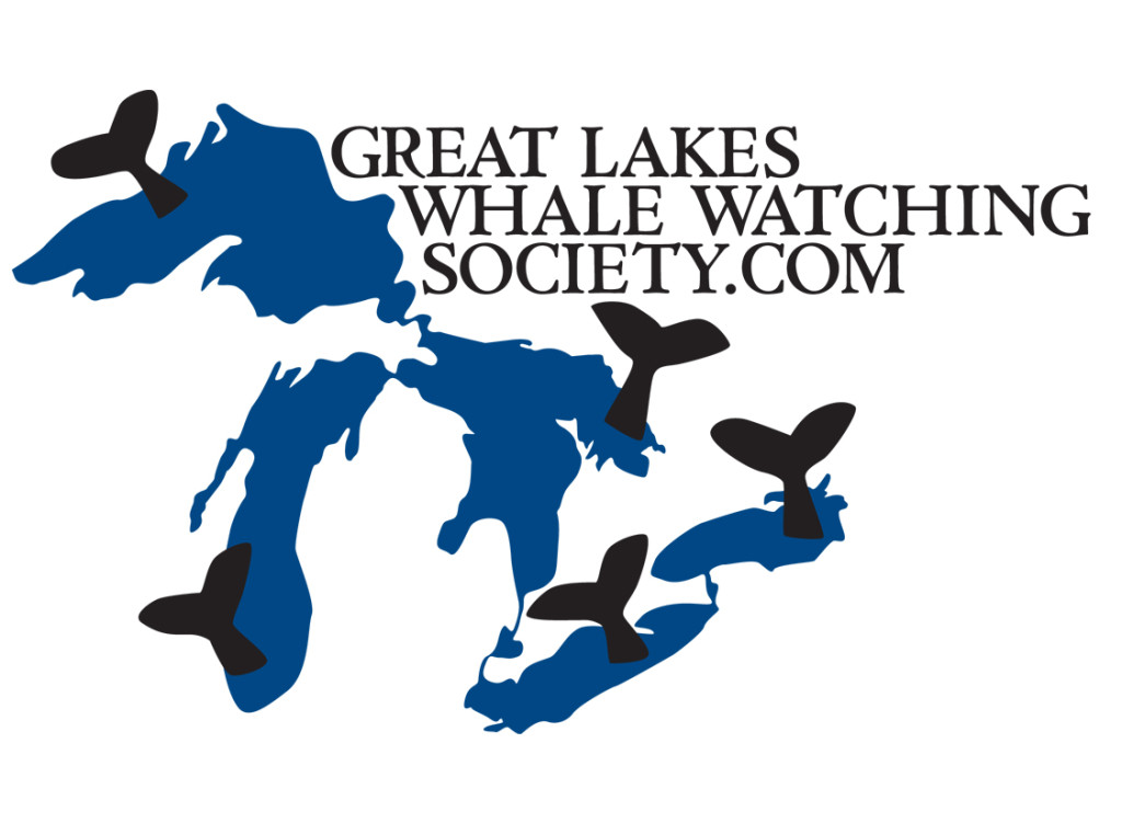 Great-Lakes-Whale-Watch-Society-3.29.16