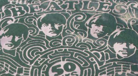 Stalking The Beatles in Corn Maze Season