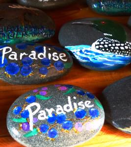 WildWorks painted rocks.P1040886