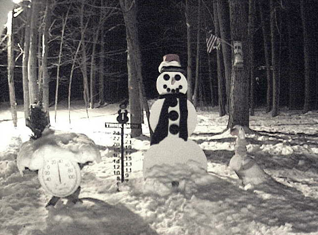 Snowman Cam in Gaylord has brought worldwide attention to Michigan's Mitten