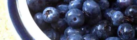 Finnish Blueberry Pie - 2